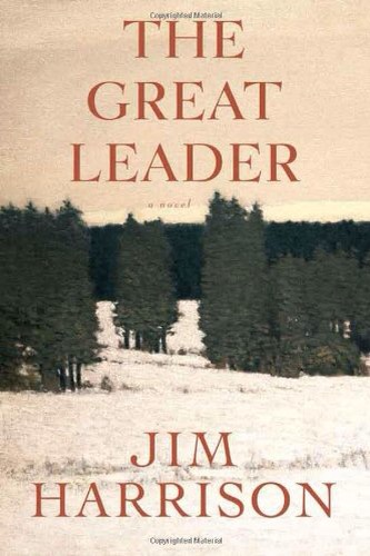 The Great Leader Book Cover